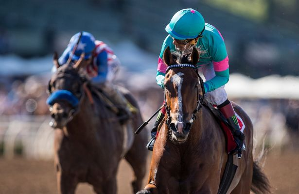 Santa Anita Breeders' Cup Preview