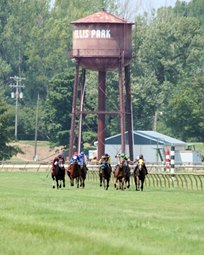 ellis_park_water_tower_coady